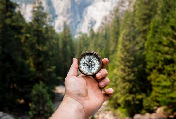 Compass in a Forest